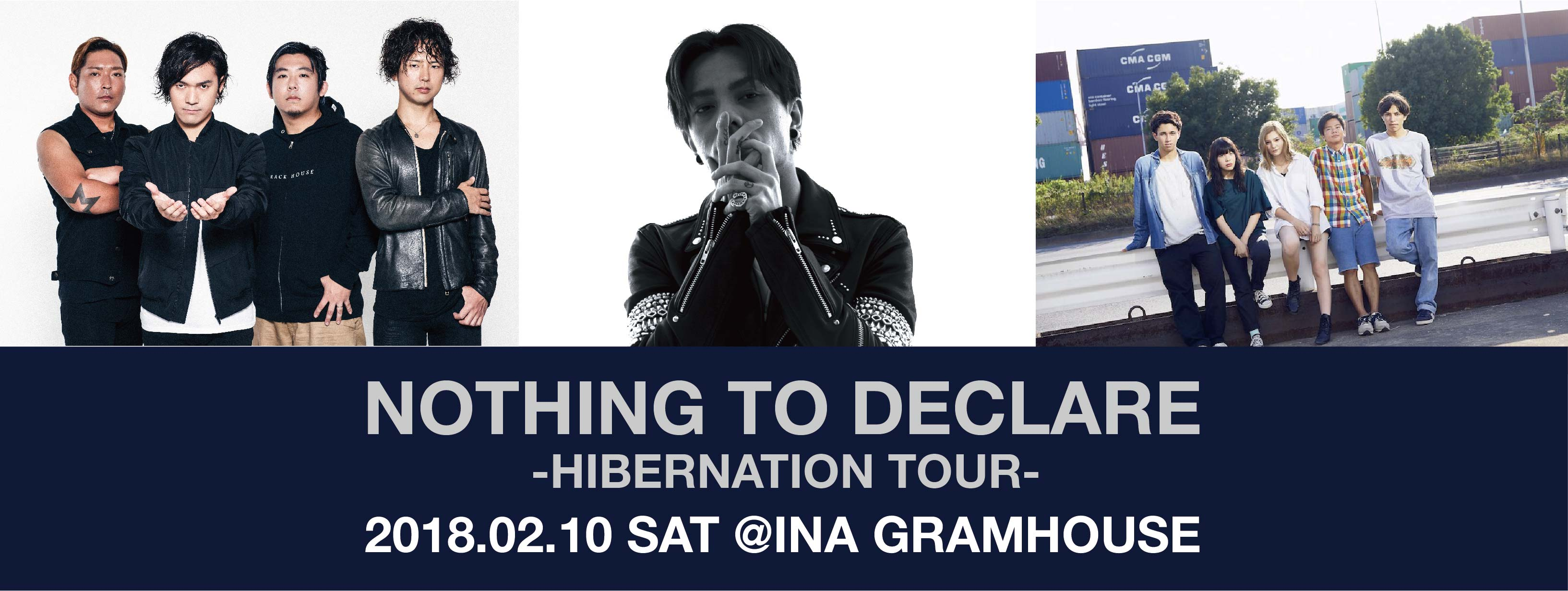 NOTHING TO DECLARE -HIBERNATION TOUR-