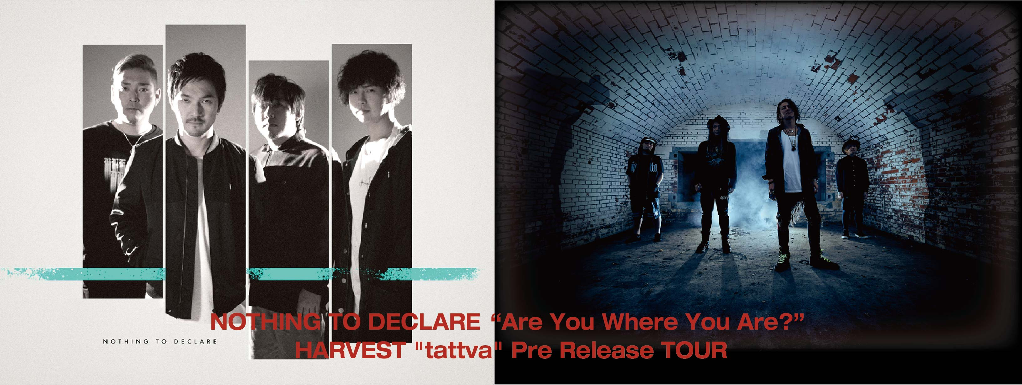 """NOTHING TO DECLARE""""Are You Where You Are?"""" Release Tour"""